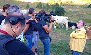 b raspelli mucche antrona tv