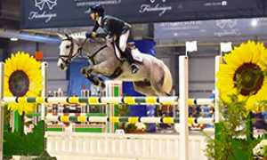 corta piovani equitazione cavallo