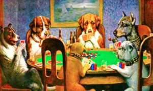 corta poker cani