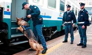 polizia cinofila cane treno