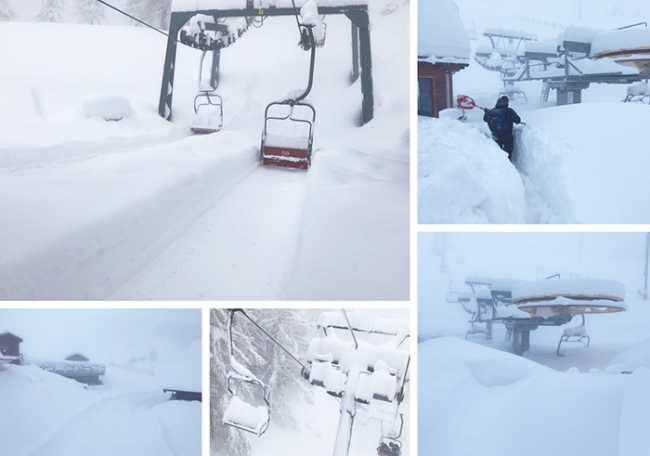 san domenico neve mix 18