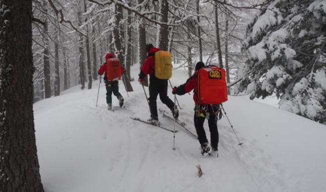 soccorso neve uomini sci fondo bosco ricerca