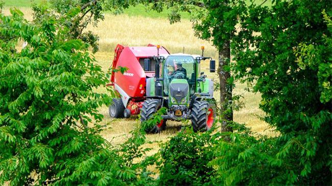 trattore albero campo