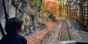Treno_del_Foliage_-_Ferrovia_Vigezzina-Centovalli_-_ph._Emanuela_Ricci_2.jpg