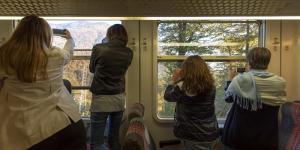 Treno_del_Foliage_-_Ferrovia_Vigezzina-Centovalli_-_ph._Giovanni_Tagini_4.jpg