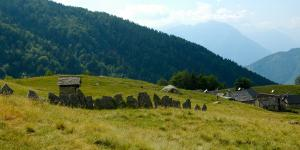 Alpe_Campra_-_Valle_Vigezzo_-_ph._Cristiano_Mazzi_2.jpg