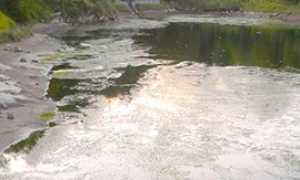 corta lago onzo inquinato