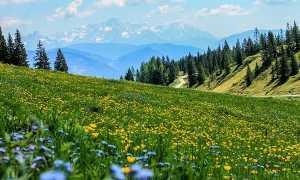 montagna paesaggio